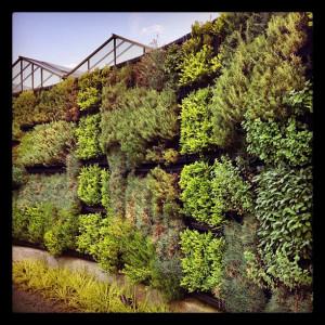 Een verticale tuin benut de ruimte die je hebt erg goed