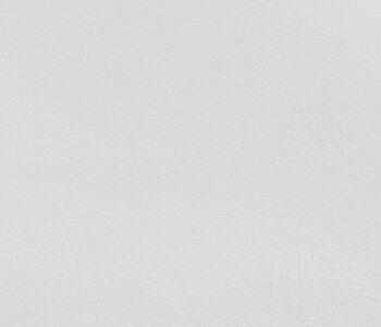 pexels-lorenzo-242236